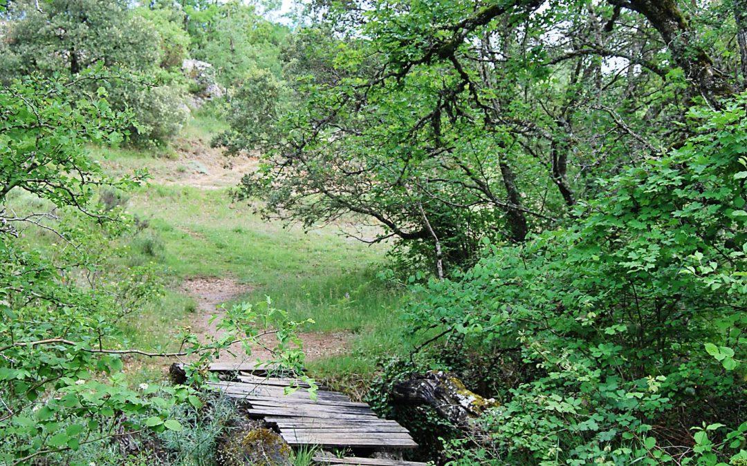 Desfiladero del Río Ayuda